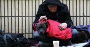Homeless exposed to health risks after COVID-19 apartment breach